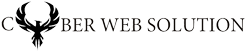 Cyber Web Solution Logo